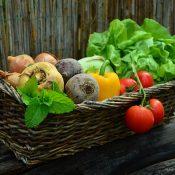 végétarisme diététique